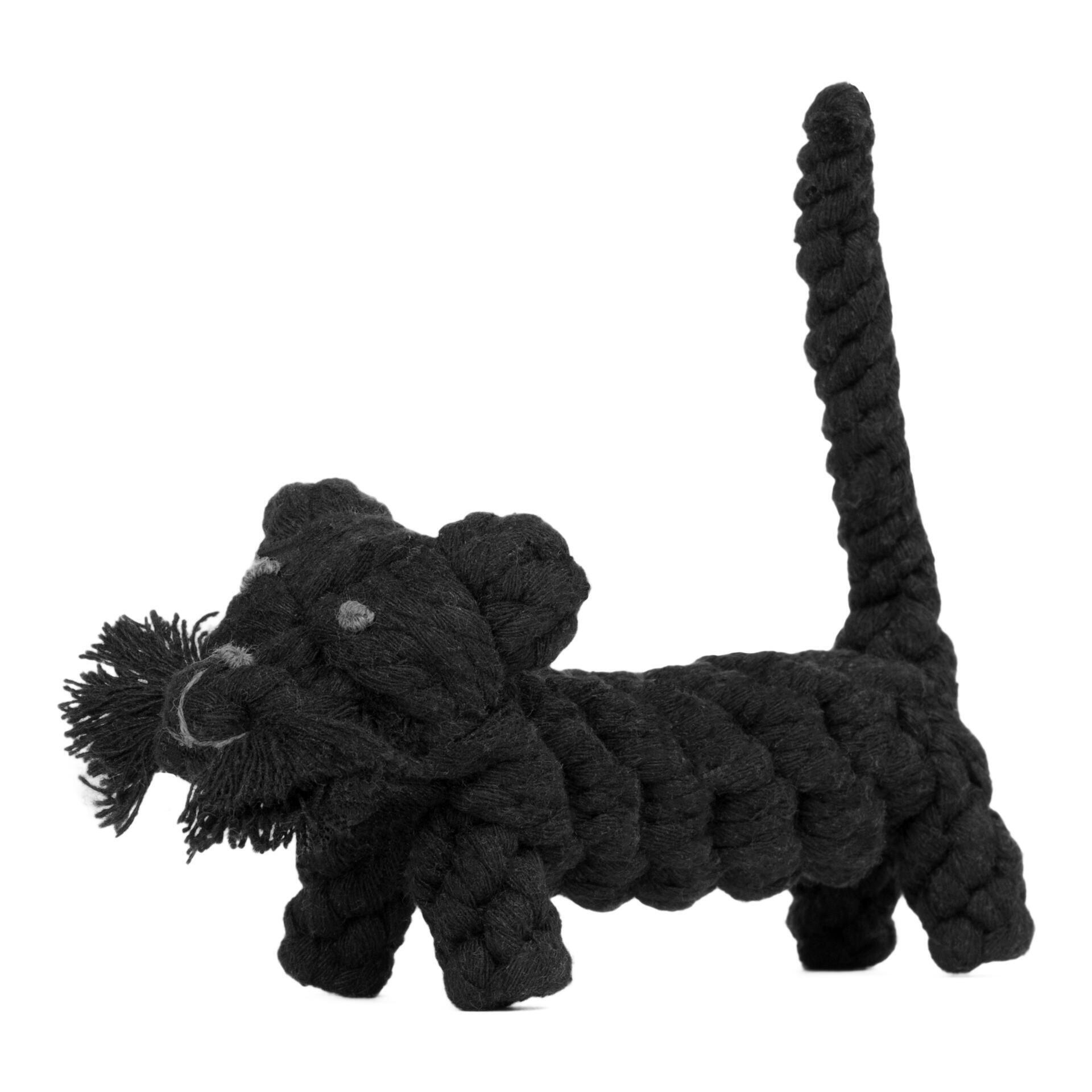 Kater Casanova - Kult-Spielzeug für Hunde
